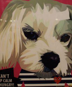 Shih Tzu Poster Dog